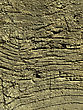 Texture Of Very Old Weathered Wood