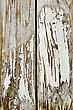 Texture Of The Old Boards With Peeling White Paint stock photo