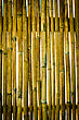 Texture Of Old Wall Bamboo stock photography