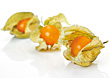 Three Physalis Fruits stock photography
