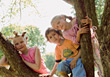 Three Young Kids In A Tree stock image