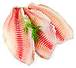 Tilapia Fillets With Dill Isolated stock image