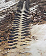 Tire Tracks Perspective Prints In Clay stock photography