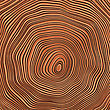Tree Rings Background Illustration. Color Version