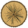 Tree Rings Background And Saw Cut Tree Trunk. Wood Icon