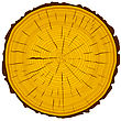 Tree Rings Saw Cut Tree Trunk Background. Vector Illustration