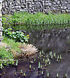 Trim Castle Wall And Moat. The Medieval Irish Kings Castle At Trim, County Meath, Ireland. Spring Season, Early Morning. stock photo