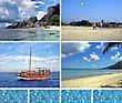 Tropical Collage stock photography