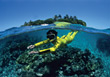 Tropical Diving Trip stock photography