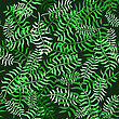 Tropical Palm Leaves Seamless Pattern. Jungle Exotic Floral Background