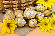 Tubers And Yellow Flowers Of Jerusalem Artichoke, Wicker Basket On A Background Of Burlap Cloth And Wooden Board stock photo