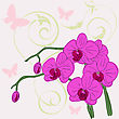 Twig Blossoming Orchids On A Background With Butterflies