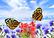 Two Beautiful Butterflies,Common Tiger Glassywing, On A Flower Field stock illustration