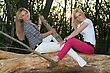 Two Playful Pretty Blonde Sitting On A Tree Branch