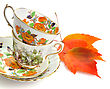 Victorian Two Vintage Coffee Or Tea Cups On White Background stock image