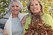 Two Women Raking Leaves stock photo