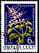 USSR - CIRCA 1972: A Postage Stamp Shows Orthosiphon Stamineus, Circa 1972 stock photo