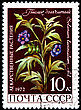 USSR - CIRCA 1972: A Postage Stamp Shows Solanum Laciniatum, Circa 1972 stock photo
