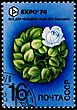 "Emblem USSR - CIRCA 1974: A Postage Stamp Shows World Of Plant And Inscription ""All For A Man For The Sake Of His Future"", EXPO'74, Circa 1974 stock image"