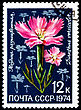 USSR - CIRCA 1974: A Postage Stamp Shows Dianthus Versicolor, Circa 1974 stock photography