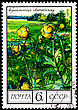 "USSR - CIRCA 1975: A Postage Stamp Shows Image Of A Globe Flower With The Designation ""Trollius Europaeus"", Circa 1975 stock photography"