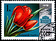 USSR - CIRCA 1978: A Postage Stamp Shows Tulip Bolshoi Theater, Circa 1978