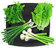 Saturated Vegetable-young Onion, Garlic, Parsley And Letucce. Isolated stock photo