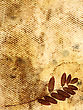 Vintage Floral Background. Dry Leaves Of A Plant On The Old Stained Grungy Paper stock photo