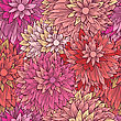 Vintage Floral Pattern In Pink Colors. Hand Drawn Chrysanthemums Flowers.Vector Illustration For Design Of Gift Packs, Wrap, Patterns Fabric, Wallpaper, Web Sites And Other