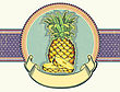 Vintage Label Illustration Of Yellow Pineapple On Old Paper For Text