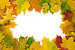 Vivid Autumnal Leaves Frame For Your Text stock photo