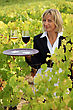 Waitress In A Vineyard