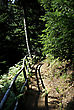 Walking Path Through Mountain Larch Forest At Sunny Summer Day stock photo