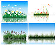 Water Flora Background Set. Four Images. Vector Illustration.