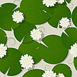 Water Lilies Design, Seamless Pattern Background