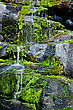 Water Trickling Down A Wall Of Mossy Rocks stock image