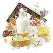 Watercolor Digital Painting Of Dairy Products