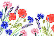 Watercolor Painted Wedding Invitation. Cornflower, Lavender, Sweet Pea And Poppy Flowers Pattern
