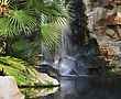 Waterfall In A Tropical Park