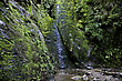 Waterfall Picton New Zealand Lush Rain Forest