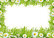 Chamomile White Camomiles And Green Grass As A Background stock photography