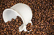 White Cup With Many Coffee Beans On Coffe Background