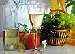 Beverages Wine And Fresh Fruits stock photo