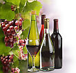 Wine Bottles Collection And Grapes stock image