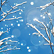 Winter Leafless Trees Background