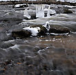Winter River. Ice On A Boulders, Water Stream stock photography