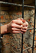 Locked Woman Hands Behind The Bars Against Brick Wall stock photography