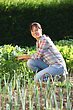Woman In Garden stock photography