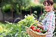 Woman In Her Vegetable Garden stock photography