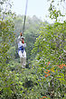 Woman Rides A Zip Line Above The Rainforest Canopy stock image